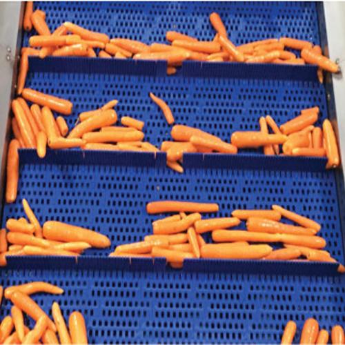 Băng tải nhựa cho nghành thực phẩm